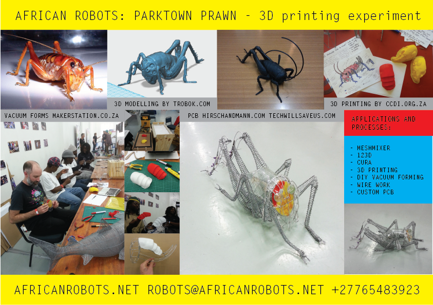 First stages of development of a Parktown Prawn, with collaborators